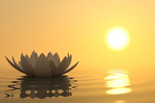 zon-en-lotus